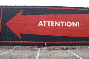 Your Dallas Guide to Dog-Friendly Street Art