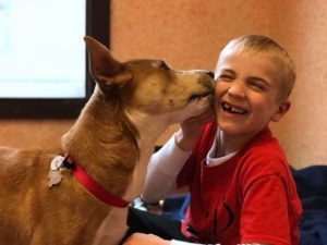 Meet the Six-Year-Old Who's Saving Shelter Dogs