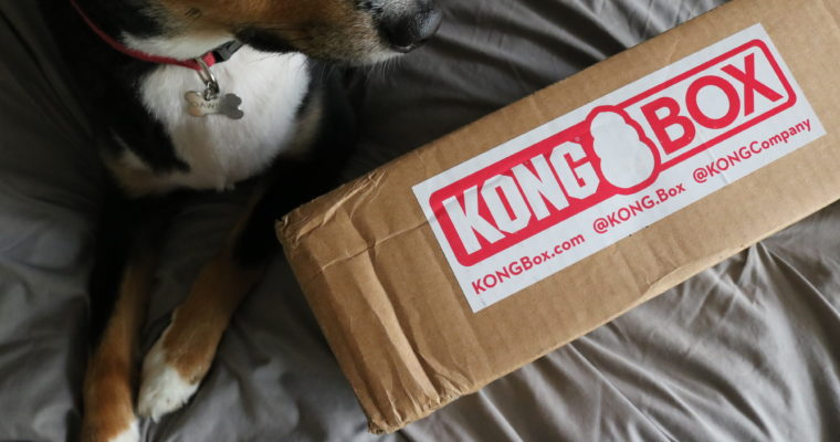 Kong Box Review