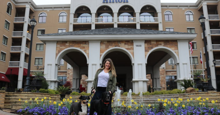 My Dog-Friendly Staycation at the Hilton Dallas/Southlake Town Square