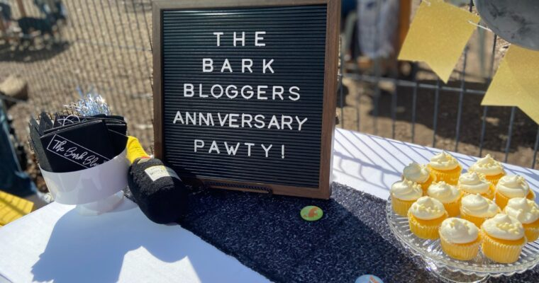 Third Anniversary Party with The Barkday Planner